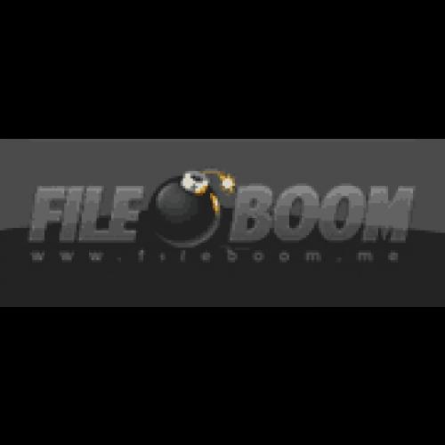 Fileboom Premium Key 365 days