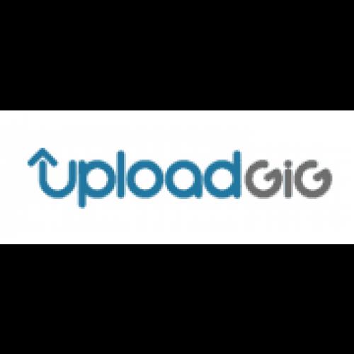 Uploadgig Premium 180 Days